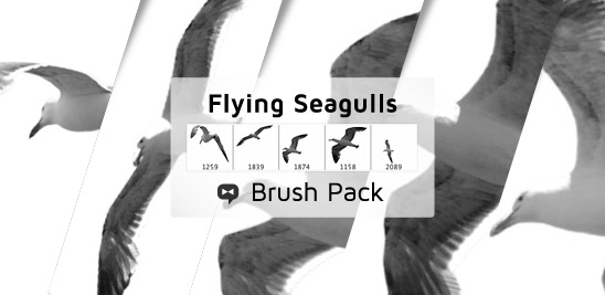 Flying_Seagulls